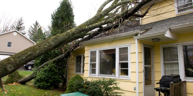 Wind Damage Repair in Central Florida